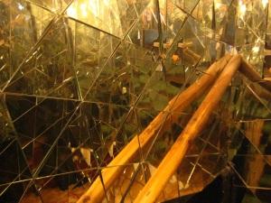 inside Sirius Teahouse